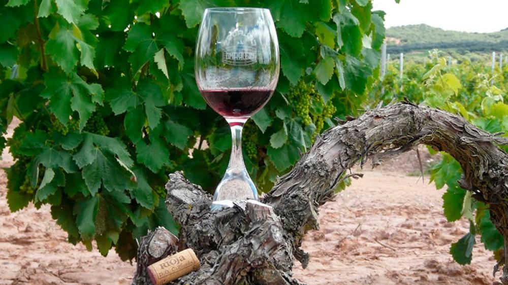 Enoturismo en La Rioja Ventosa